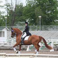Leah Wilson Victory Gallop Blainville CDI